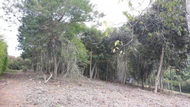 Terreno à venda, 1575 m² por R$ 150.000 - Fazenda Boa Fé - Teresópolis/RJ - Foto 2
