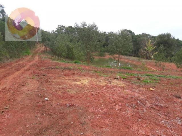 Chácara  à venda, 23000 m² por R$ 180.000 - Palmerinha - Campina Grande do Sul/PR - Foto 6