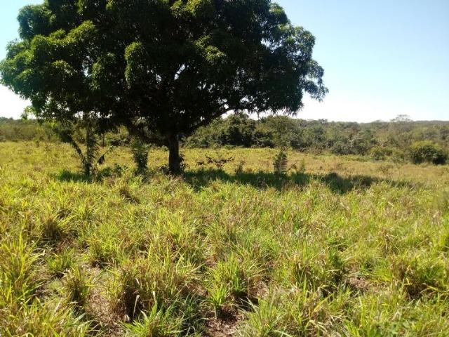 Chácara em Acorizal 38,2 hectares - Foto 4