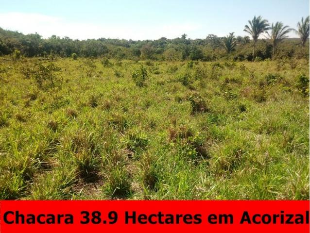 Chácara em Acorizal 38,2 hectares