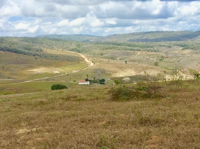 Fazenda em Boa Nova BAHIA com 167he - Foto 10