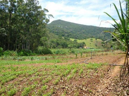 Fazenda rural à venda, Serra do Capim, Teresópolis. - Foto 18