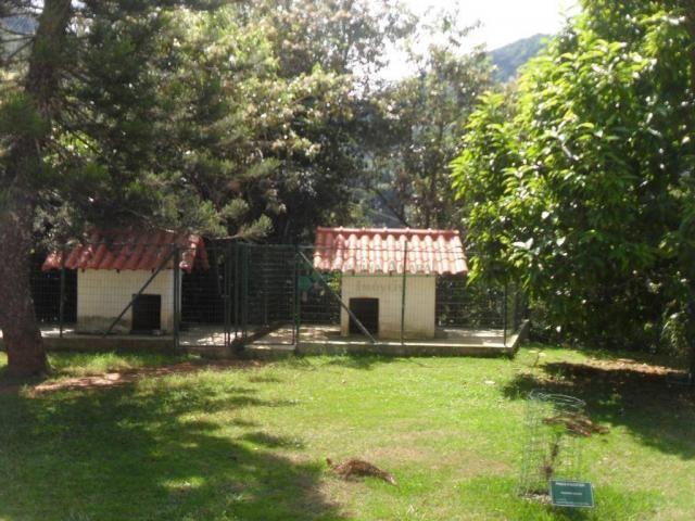 Sítiio em Teresópolis - Foto 13