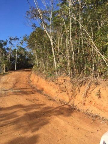 Terreno PLANO residencial à venda, Vargem Grande, Teresópolis. - Foto 6