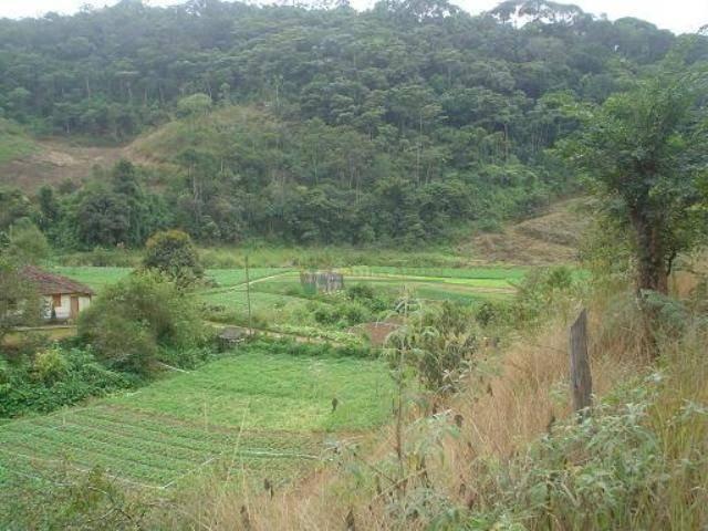 Área rural à venda, Providência, Teresópolis. - Foto 10