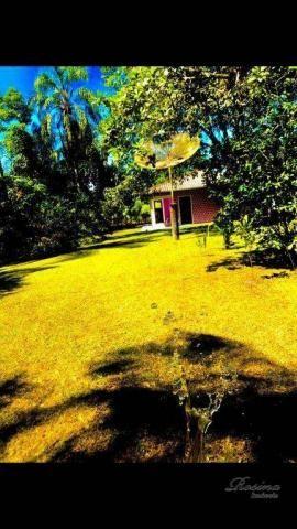 Chácara à venda, 81250 m² por R$ 1.100.000 - América de Cima - Morretes/PR - Foto 5
