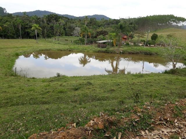 Linda área com 10 hectares a venda em Tijucas SC!!! - Foto 2