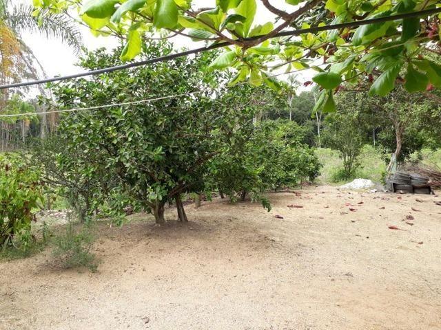 Linda área com 10 hectares a venda em Tijucas SC!!! - Foto 10