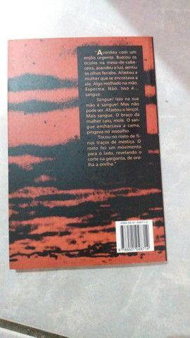 O Fascinio - Livro - Foto 2