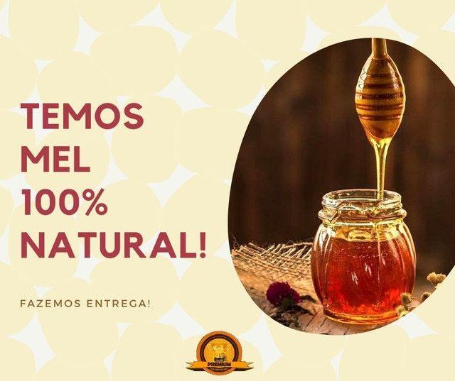 Mel de abelha puro 700 gramas - Foto 2