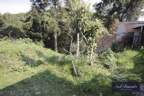 Terreno à venda, Braga, São José dos Pinhais. - Foto 4