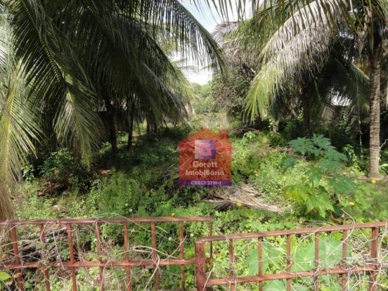 Terreno rural à venda, Genipabu, Extremoz. V0696 - Foto 5