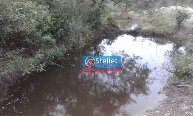 Sítio à venda, Villa Verde, Rio das Ostras - RJ - Foto 3