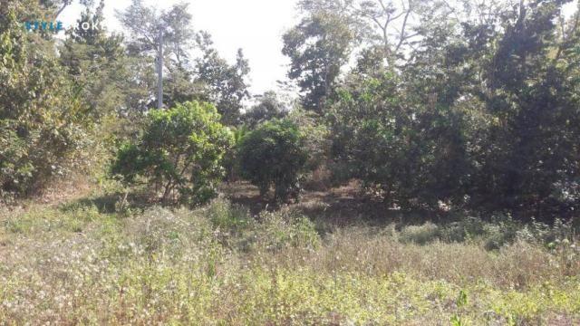 Chácara na Beira do Rio Manso - Foto 5