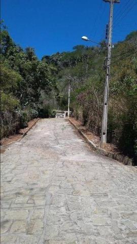 Terreno residencial à venda, Três Córregos, Teresópolis. - Foto 19