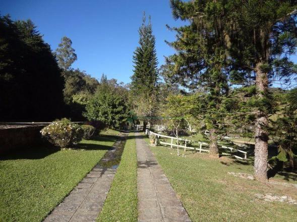 Sítio rural à venda, Córrego das Pedras, Teresópolis. - Foto 8
