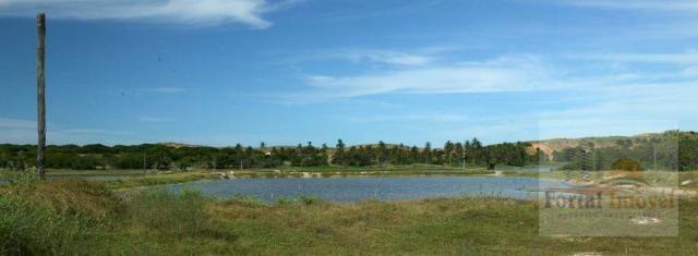 Fazenda em Icapuí com 19,5 Hectares, 4 viveiros - Foto 3