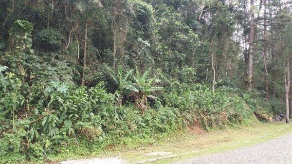 Terreno à venda, 2331 m² - Comary - Teresópolis/RJ - Foto 4