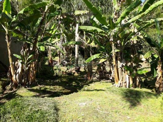 Terreno residencial à venda, Parque do Imbui, Teresópolis. - Foto 4