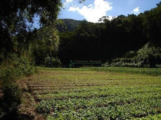 Área rural à venda, Providência, Teresópolis. - Foto 3