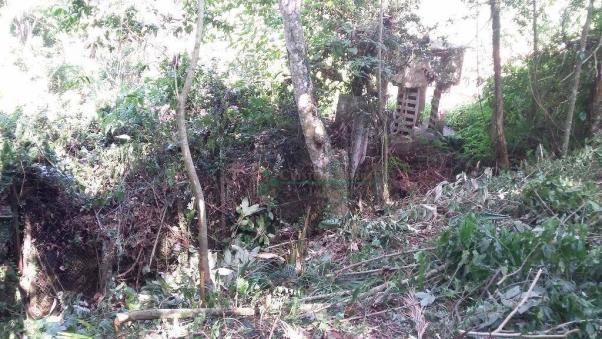 Terreno residencial à venda, Três Córregos, Teresópolis. - Foto 16