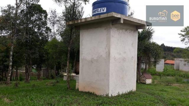 Chácara à venda, proximo a Igreja do Rosário em Colombo - PR - Foto 5