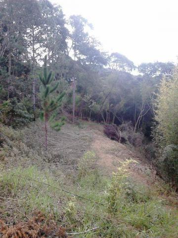 Terreno residencial à venda, Fazenda Boa Fé, Teresópolis - TE0063.