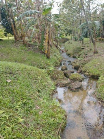 Chácara à venda, 81250 m² por R$ 1.100.000 - América de Cima - Morretes/PR - Foto 18