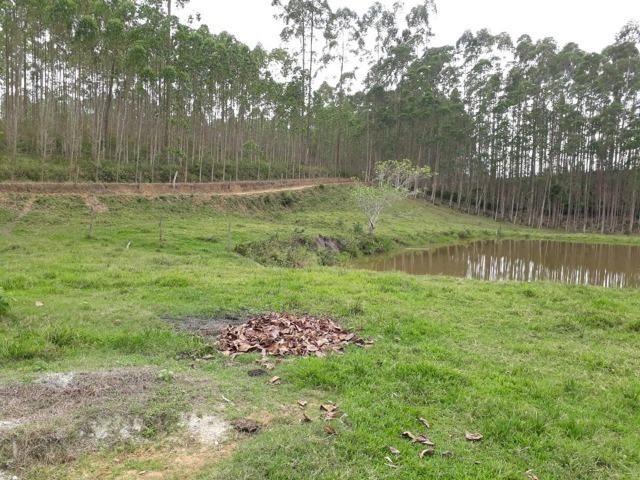 Linda área com 10 hectares a venda em Tijucas SC!!! - Foto 9