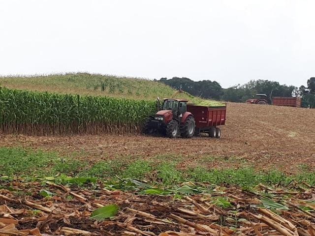 Carreta agrícola brasimp 8 toneladas - Foto 3