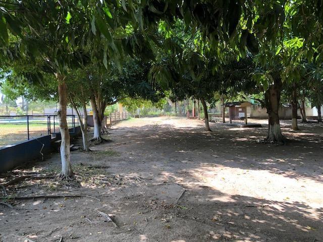 Terreno em Condomínio Campestre 300m² - Foto 8