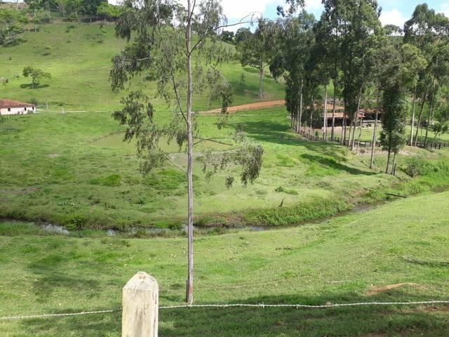 Vendo fazenda em Jiquiriçá ba - Foto 5