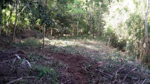 Terreno residencial à venda, Três Córregos, Teresópolis. - Foto 6