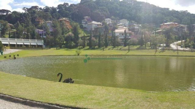Terreno residencial à venda, Vargem Grande, Teresópolis. - Foto 12