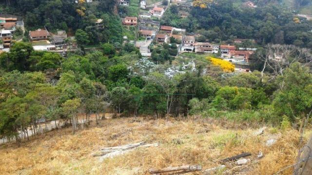 Terreno residencial à venda, Quinta da Barra, Teresópolis. - Foto 2