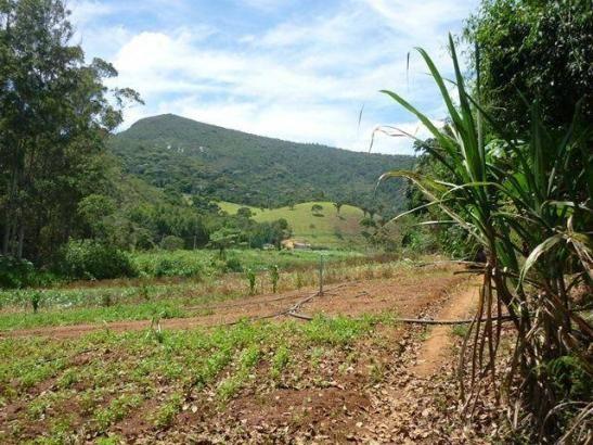 Fazenda rural à venda, Serra do Capim, Teresópolis. - Foto 19