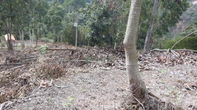 Terreno à venda, 1575 m² por R$ 150.000 - Fazenda Boa Fé - Teresópolis/RJ - Foto 3