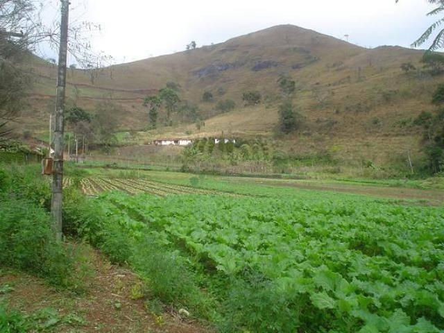 Área rural à venda, Providência, Teresópolis. - Foto 11