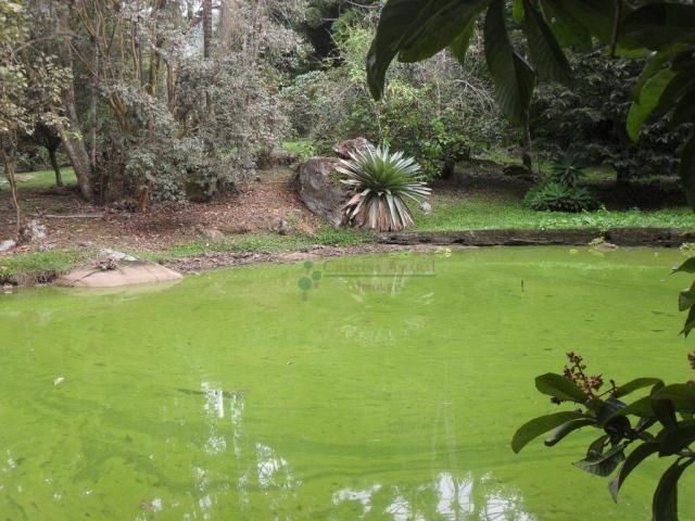 Sitio Teresópolis - Foto 15