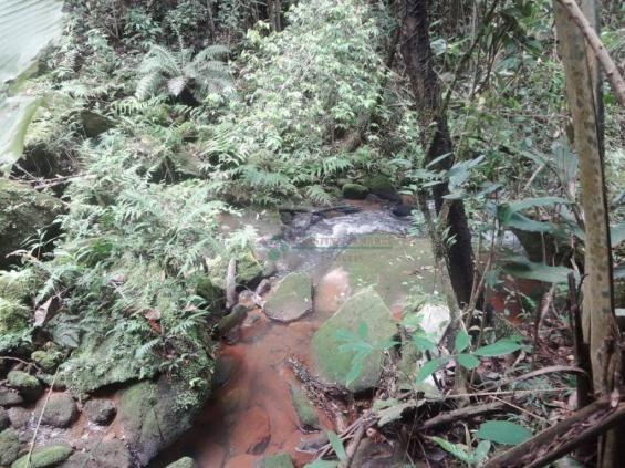 Sitio com 780.000 m² por R$ 1.150.000 - Ponte Nova - Teresópolis/RJ - Foto 20