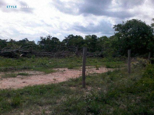 Chácara na Estrada de Cáceres à venda, 200000 m² por R$ 150.000 - Zona Rural - Cáceres/MT - Foto 5