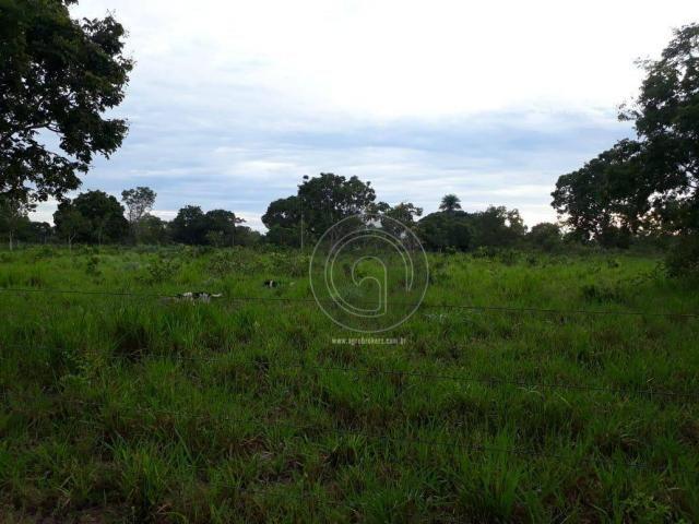 Fazenda 104 ha poconé mt - Foto 7
