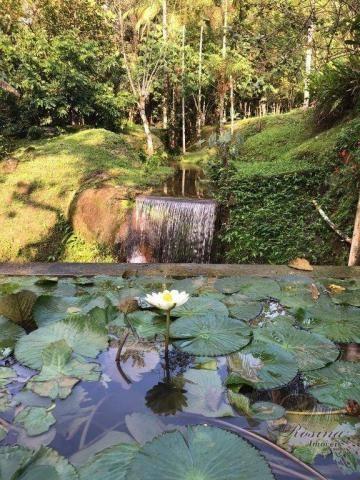 Chácara à venda, 81250 m² por R$ 1.100.000 - América de Cima - Morretes/PR - Foto 9