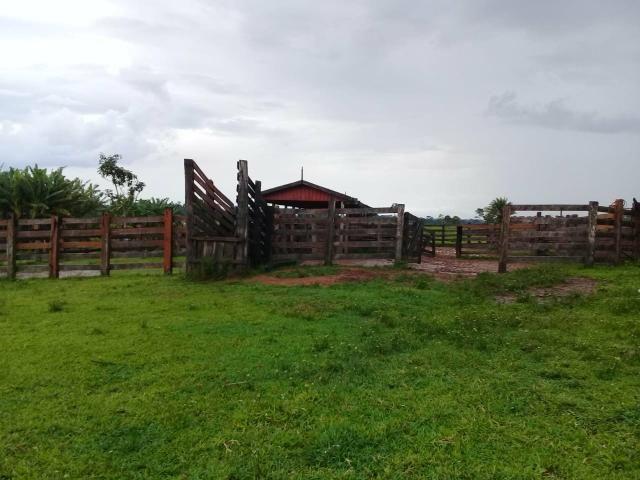 Vende-se fazenda - Foto 5