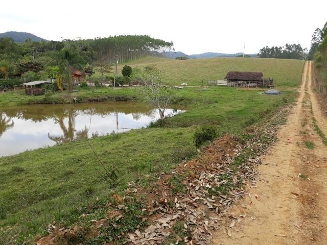 Linda área com 10 hectares a venda em Tijucas SC!!! - Foto 6