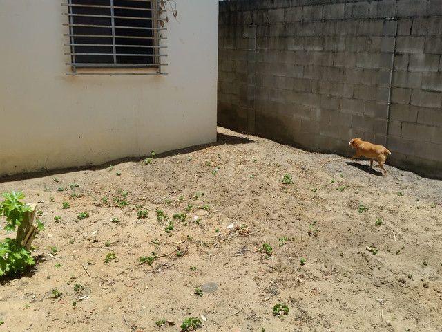 Vendo uma casa em Linhares . Entrada de 15 Mil +Parcelas a partir de 600 ao mes  - Foto 11