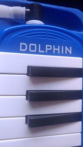 Escaleta - Dolphin - Foto 4