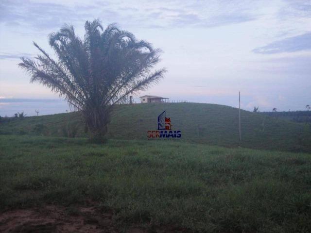 Fazenda Localizada na cidade de Buritis-RO - Foto 9