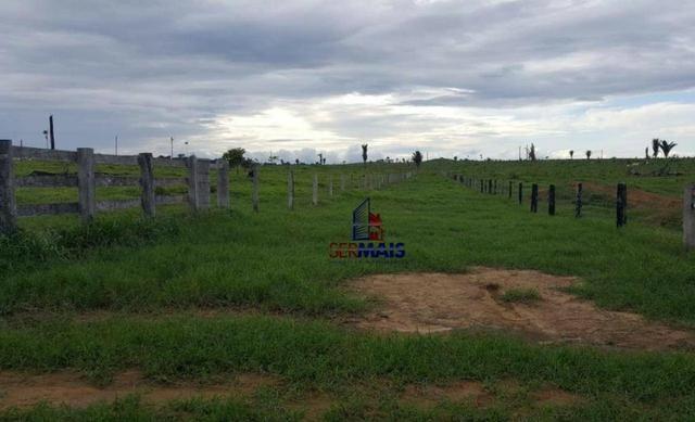 Fazenda Localizada na cidade de Buritis-RO - Foto 20