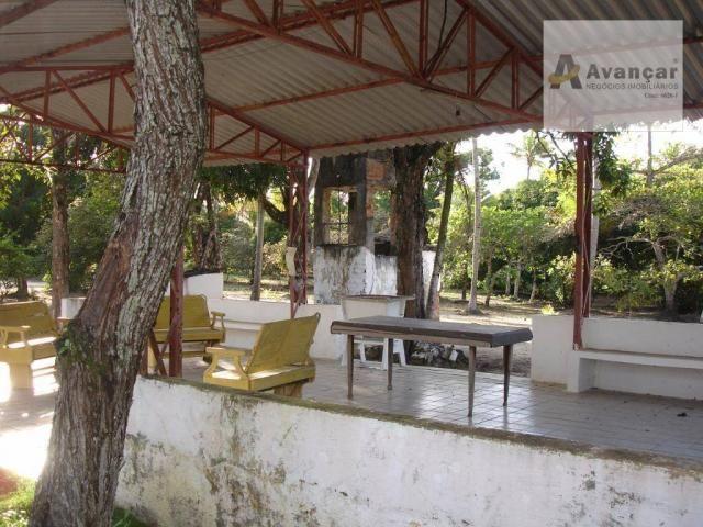Chácara com 3 dormitórios à venda, 20000 m² por R$ 500.000,00 - Carne de Vaca - Goiana/PE - Foto 6